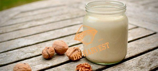 Sữa quả óc chó – Cách chế biến sữa hạt óc chó tại nhà
