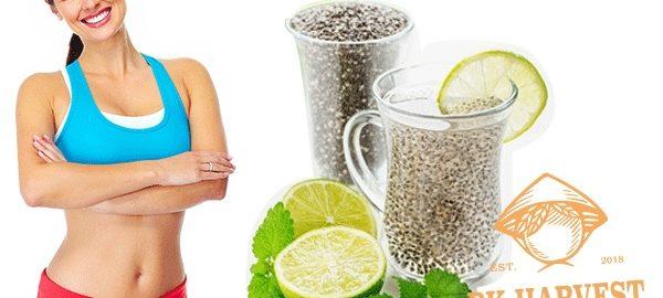 Hạt chia giảm cân dùng thế nào an toàn, hiệu quả