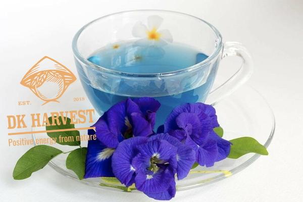 Cách pha trà sữa hoa đậu biếc, đậu biếc Macchiato, đậu biếc latte…