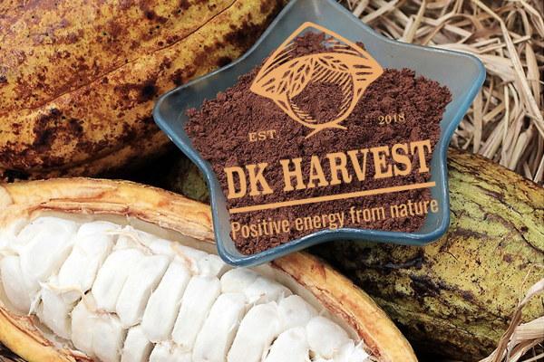 Cacao – Nguồn gốc và tác dụng của cacao mà bạn cần biết