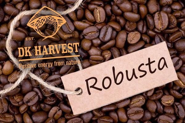 Cà phê Robusta – Loại cà phê mang hương vị của Việt Nam