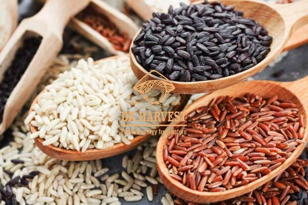 Gạo lứt là gì? Những tác dụng của gạo lứt với sức khỏe